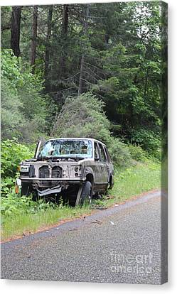 Canvas Print featuring the photograph Road Kill by Marie Neder