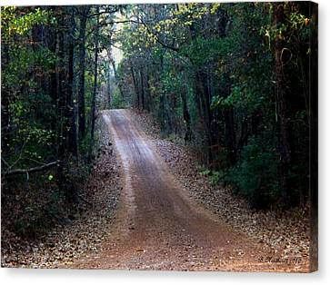 Canvas Print featuring the photograph Road Not Taken by Betty Northcutt