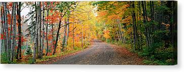 Road Passing Through A Forest, Keweenaw Canvas Print by Panoramic Images