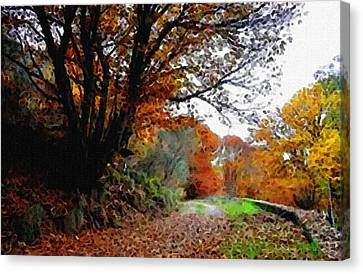 Road Through An Autumn Forest H B Canvas Print by Gert J Rheeders