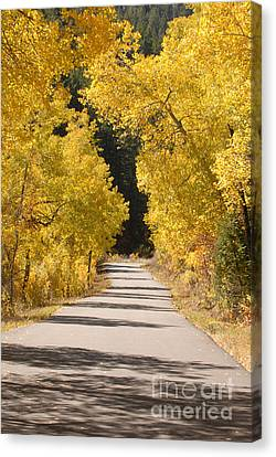 Road To Autumn Canvas Print by Dennis Hammer