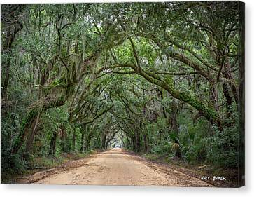 Road To Botany Bay Canvas Print