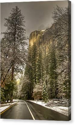 Road To El Capitan After Snow Storm At Sunrise Canvas Print