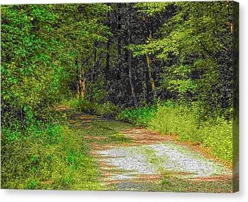 Road To Heaven Canvas Print by Michael Degenhardt