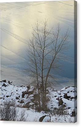Road To Horsetooth 1 Canvas Print by Diane M Dittus