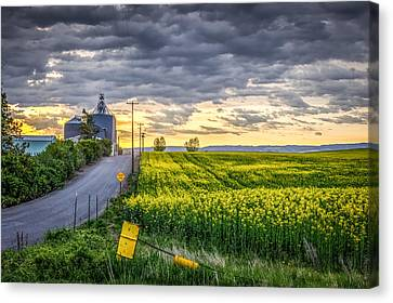 Road To Mann's Lake Canvas Print by Brad Stinson