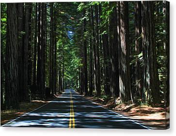 Road To Mendocino Canvas Print