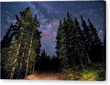 Road To Milky Way Canvas Print by Michael J Bauer