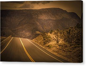 Sunlight Canvas Print - Road To Nowhere  by Art Spectrum