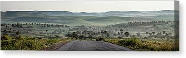 Road To The Forest Canvas Print