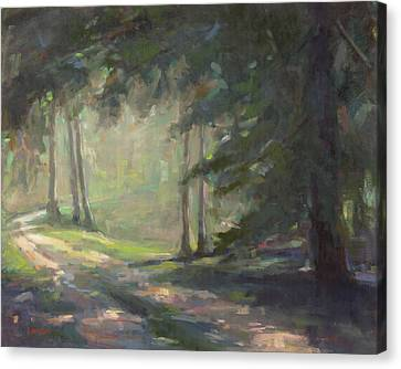 Dappled Light Canvas Print - Road To The Light by Colleen Webster