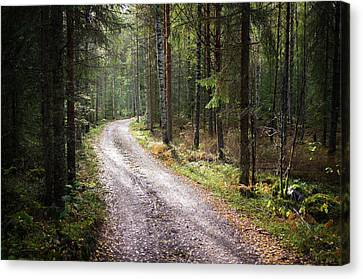 Road To The Light Canvas Print