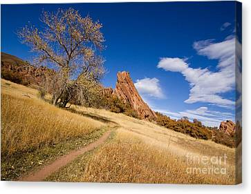 Road To The Rocky Blue Canvas Print by Andrew Serff