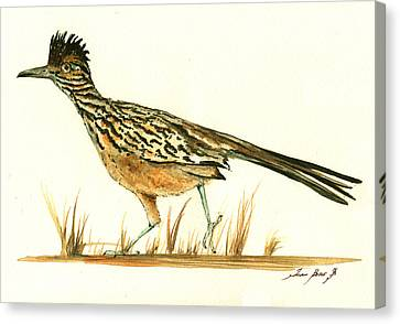 Roadrunner Bird Canvas Print by Juan Bosco