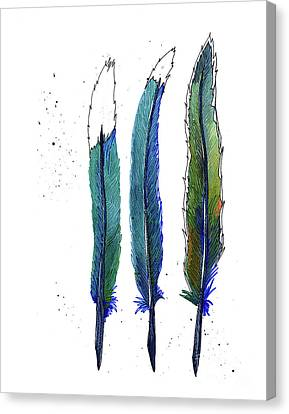 Roadrunner Canvas Print - Roadrunner Feathers by Allie Rowland