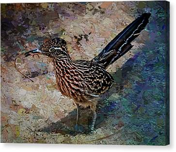 Roadrunner Making Nest Canvas Print by Penny Lisowski