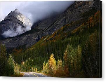 Roadside Landscape At Banff National Park Canvas Print by Jetson Nguyen