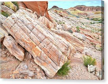 Canvas Print featuring the photograph Roadside Sandstone In Valley Of Fire by Ray Mathis