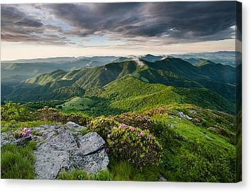 Roan Highlands Southern Appalachian Trail Spring Scenic Canvas Print by Mark VanDyke
