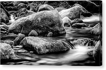 Gatlinburg Tennessee Canvas Print - Roaring Fork Mossy Rock - Classic Bw by Stephen Stookey