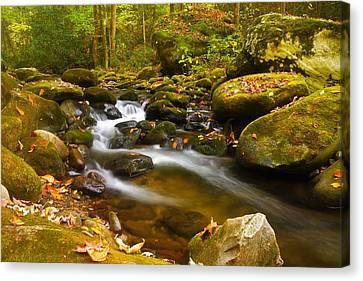 Gatlinburg Tennessee Canvas Print - Roaring Fork Stream by Dennis Nelson