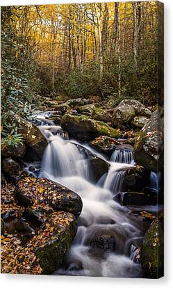 Roaring Fork Waterfall At Autumn Canvas Print by Andrew Soundarajan