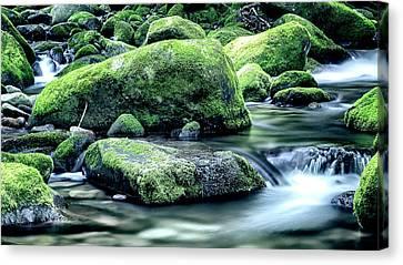 Gatlinburg Tennessee Canvas Print - Roaring Forks Mossy Rocks - Muted Green by Stephen Stookey