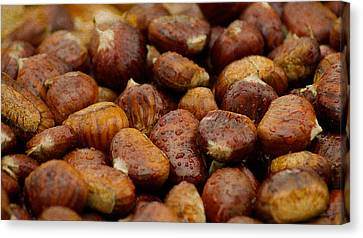 Roasted Chestnuts Closeup Canvas Print
