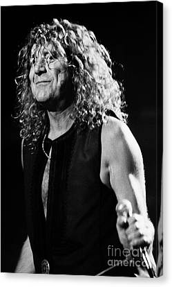 Robert Plant Performance Art Canvas Print - Robert Plant-0039 by Timothy Bischoff