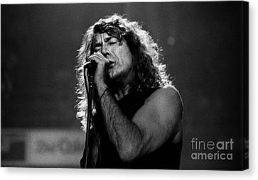 Robert Plant Performance Art Canvas Print - Robert Plant-0041 by Timothy Bischoff