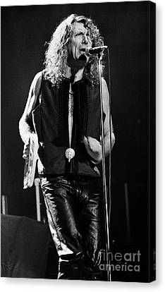 Robert Plant Performance Art Canvas Print - Robert Plant-0064 by Timothy Bischoff