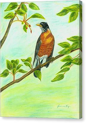 Canvas Print featuring the painting Robin In Spring by Jeanne Kay Juhos