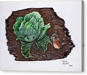 Robin In The Gardin Canvas Print by Judy Kirouac