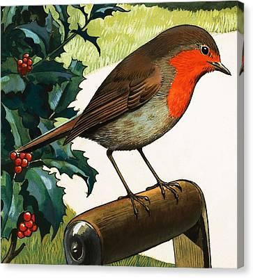 Berry Canvas Print - Robin Redbreast by English School