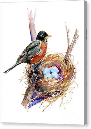 Nurture Canvas Print - Robin With Nest by John Keeling