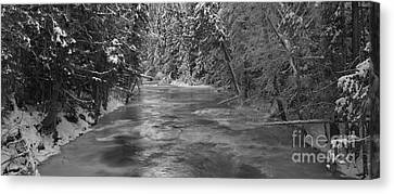 Robson River Black And White Canvas Print by Adam Jewell