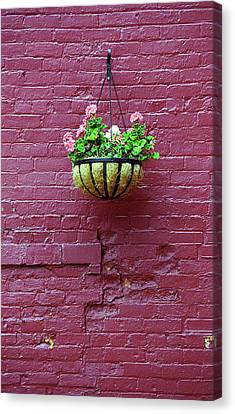Canvas Print featuring the photograph Rochester, New York - Purple Wall by Frank Romeo