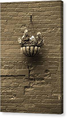 Canvas Print featuring the photograph Rochester, New York - Wall And Flowers Sepia by Frank Romeo