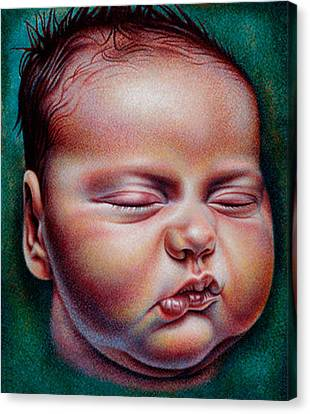 Canvas Print featuring the drawing Rock-a-bye Baby by Donna Basile