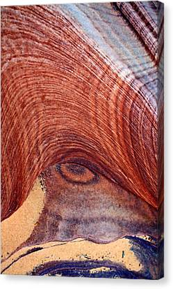Canvas Print featuring the photograph Rock Art by Farol Tomson