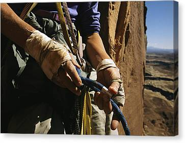 Rock Climber Becky Halls Wrapped Hands Canvas Print by Bill Hatcher