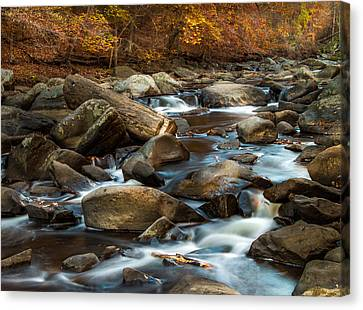 Rock Creek Canvas Print by Ed Clark