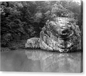 Canvas Print featuring the photograph Rock by Curtis J Neeley Jr