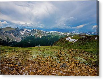 Canvas Print featuring the photograph Rock Cut 2 - Trail Ridge Road by Tom Potter
