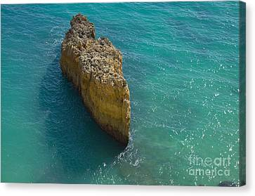 Rock Formation And The Sea In Algarve Canvas Print