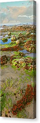 Roca Canvas Print - Rock Formations In The Coast, Las by Panoramic Images