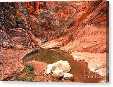 Rock In The Red Canyon Canvas Print