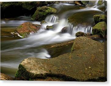 Rock Water And Moss Canvas Print by Timothy McIntyre