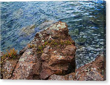Rock With Face And Lichen Canvas Print by Bonnie Follett