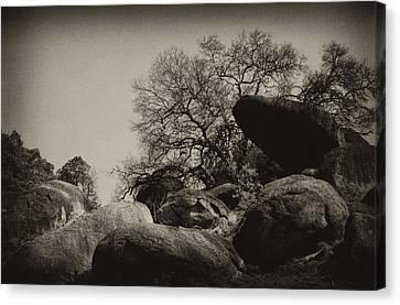 Rocks Canvas Print by Amarildo Correa
